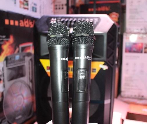 Loa sử dụng 2 mic cầm tay không dây