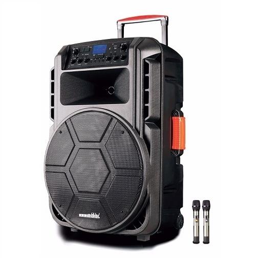 Loa kéo tay A/D/S-HC-T15F ( Bass 40)