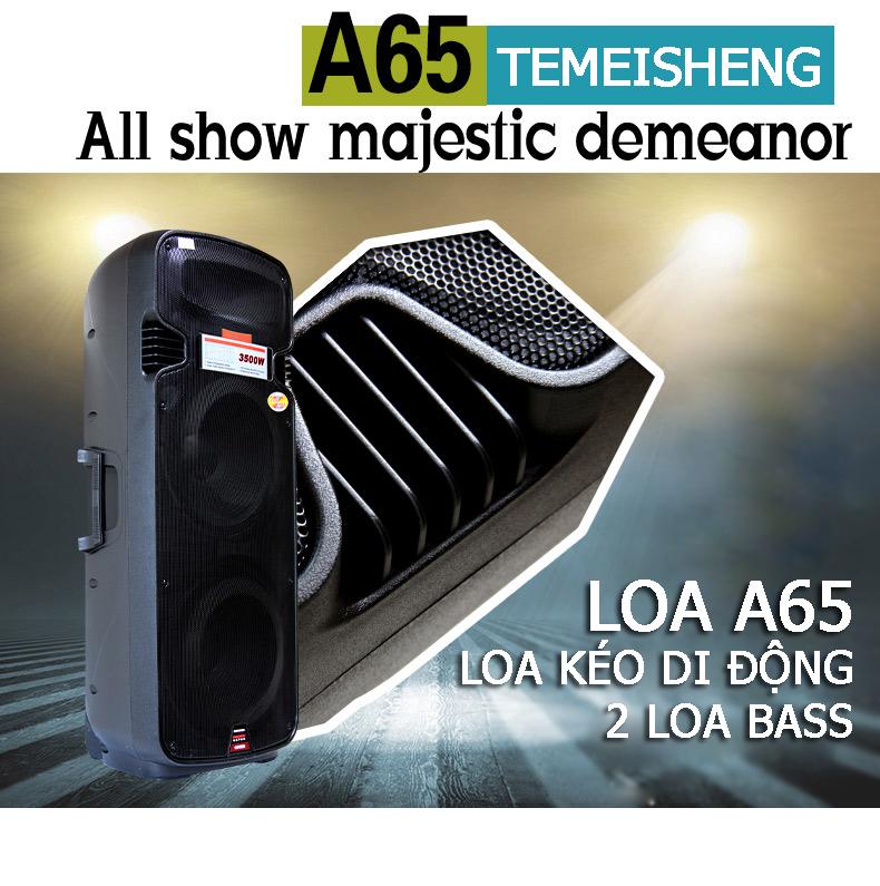 temeisheng-a65